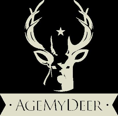 vertial logo